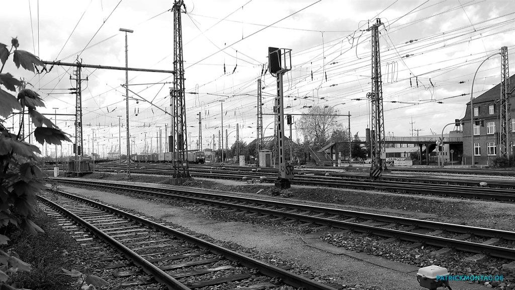 P1010220-Snapseed.jpg